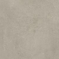 ABSOLUTE 30X60 TAUPE R9